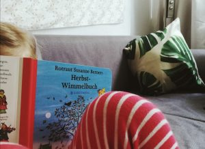 Buchrezension: Herbst Wimmelbuch