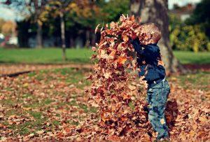 So wird der Herbst nicht langweilig